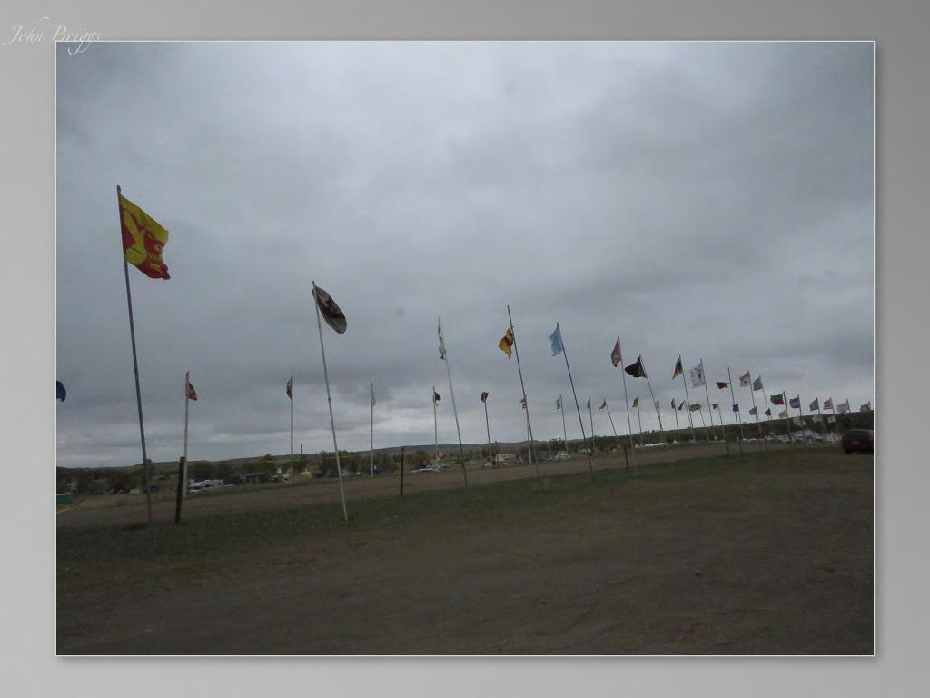 standing-rock-flags