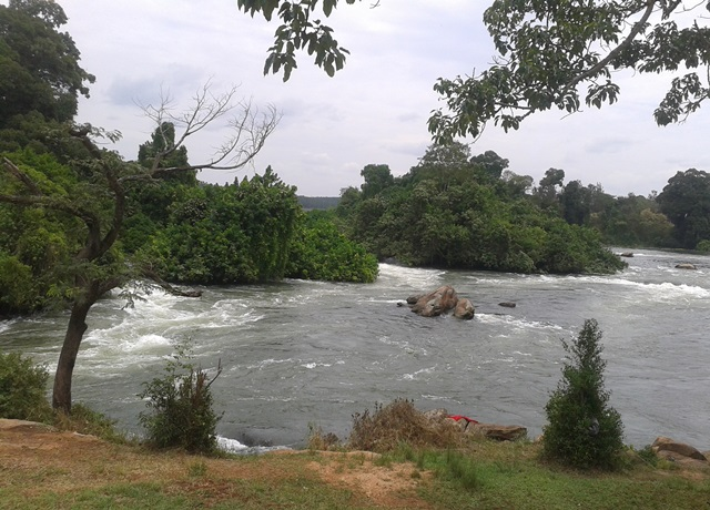 River Nile - Chief Tamale Bwoya